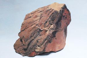Shattercone-Kimberley-WA-sml